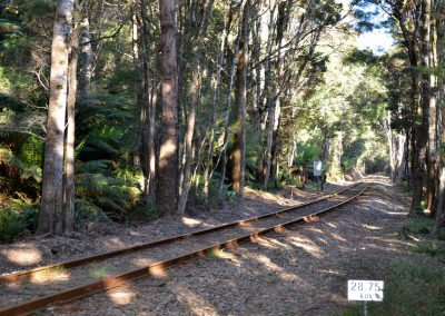 Western Wilderness Railway Lowana Tas